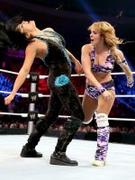 WWE-Main-Event-Digitals-3-20-13-wwe-layla-33998920-642-722